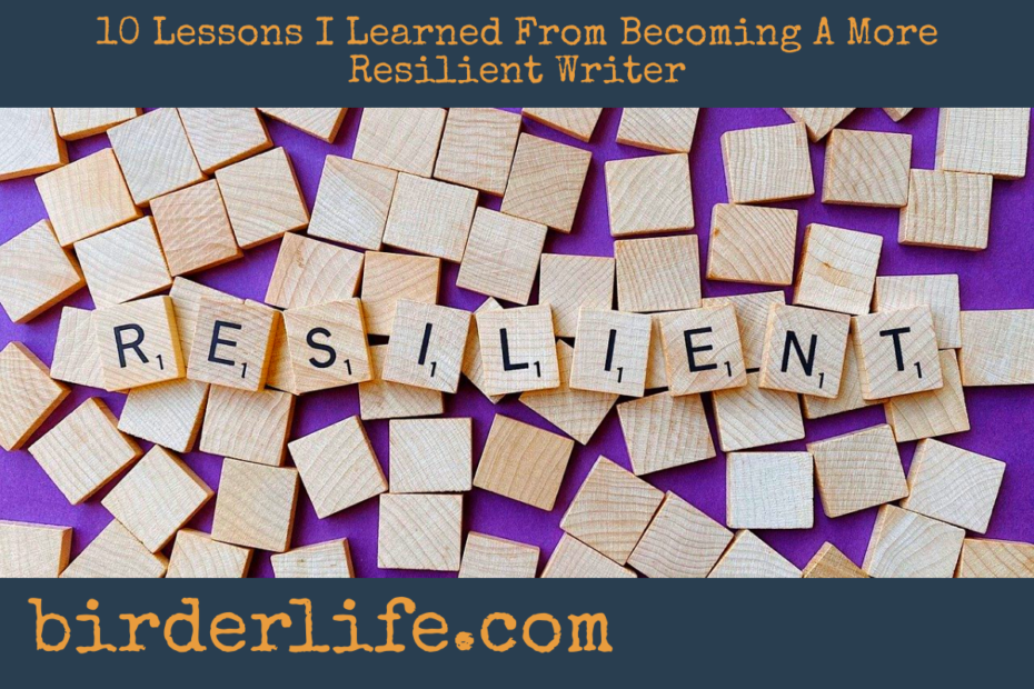 0-Lessons-I-Learned-From-Becoming-A-More-Resilient-Writer
