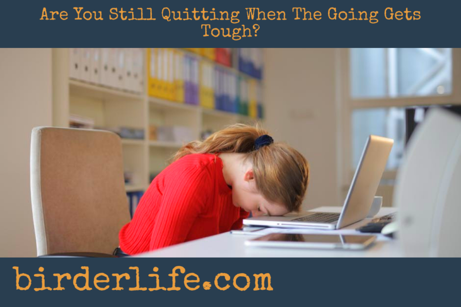Are-You-Still-Quitting-When-The-Going-Gets-Tough
