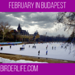 February in Budapest