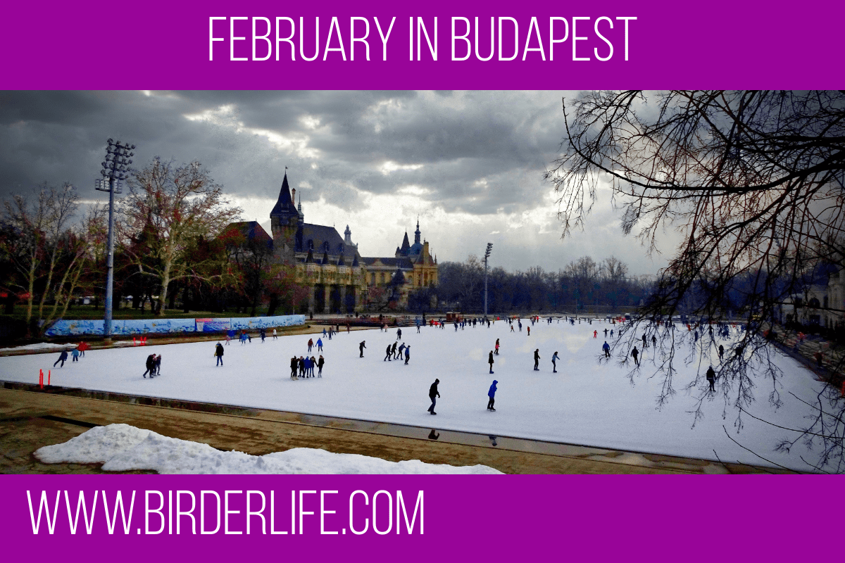 february-in-budapest