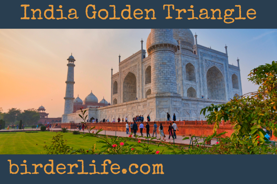india-golden-triangle