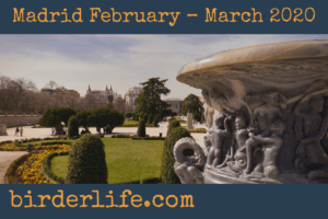 madrid-february–march-2020